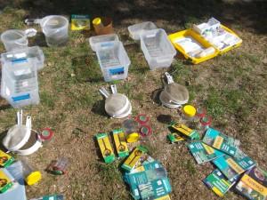 Szykujemy sprzęt do połowu i obserwacji bezkręgowców żyjących w wodzie